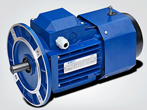 YEJ Series Brake Motors