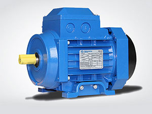 Aluminum Housing AC Induction Motors