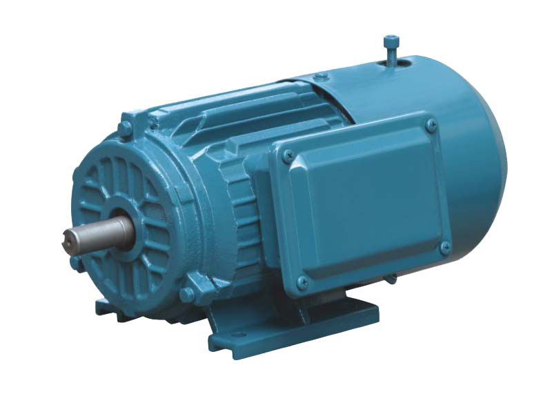 Y2 Series Cast Iron AC Induction Motors (With Brakes)