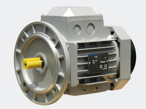 YE2 Series High Efficiency AC Motors
