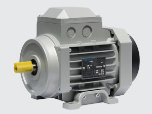 IE3 AC Induction Motors
