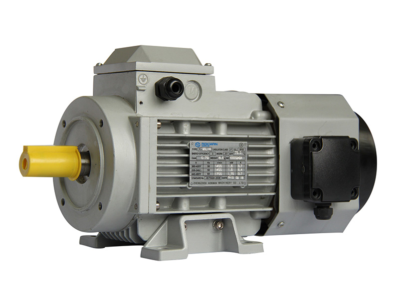 YVF Series Variable Frequency Motors